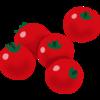 一粒のミニトマトが何倍になる?(1/2)
