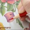 【動画公開】(リボン編)ダイソー塗り絵「花の国」を赤・青・黄の3色で塗ってみた。