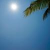 『人生に役立つ宇宙・自然からの教え』「十二支」の「午」の意義