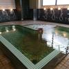 平川市 鷹の羽温泉に日帰り入浴に行った話!♨️