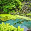 オンネトー湯滝の池(北海道足寄)