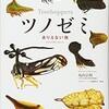 「ツノゼミ ありえない虫」(丸山宗利)