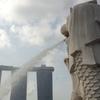 シンガポールで異民族間の結婚が増加。そのシンガポールらしい理由とは