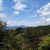 日本屈指の桜の名所 吉野へ行ってきたよ