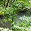 八光の池(青森県深浦)