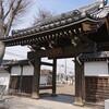 延命寺のしだれ桜(筑西市指定文化財・天然記念物)