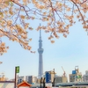 2020年、東京とコロナと私。