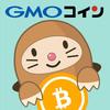 急いで始めたいなら【仮想通貨】GMOでの口座開設【超初心者】今ならビットコインがもらえるよ!