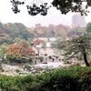 東京の雪と紅葉の庭園。六義園、小石川後楽園、井の頭公園