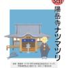 8/6(土)陽岳寺ナツマツリについて