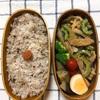 20180619ゴーヤと豚肉の味噌炒め弁当&チャレンジ1年生7月号が来た!