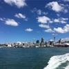 留学先にニュージーランドはいかが?