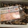 個人主催のDota 2大会を応援していたら岡山・小笠原水産より牡蠣を大量にいただいてしまった話