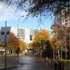 【NZワーホリ】ニュージーランドの語学学校の卒業時には、卒業スピーチがあるのが一般的らしい???