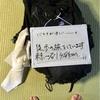 【徒歩の旅】出発まであと2日〜冒険の準備〜
