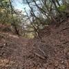 太陽と緑の道コース№14(天神橋‐中山大杣池‐志久峠‐肘曲り)4.7km