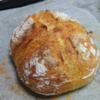 憧れのパンを作ろう。Pain de campagne作りの道 その②