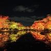 2020年11月の京都旅行 2泊3日 3日目(後半)