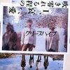 松井玲奈さんがさいたまスーパーアリーナのイベントでかけた曲を分類分けしてみた