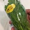 魅惑の春菊サラダ
