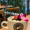 ハワイ旅行5日目その①~Island vintage coffeeにて朝食を♪~