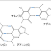 医療工学科の化学講義(28)バイオテクノロジーを支援する化学