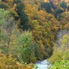 飛騨の秋景色 【大白川】