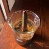 マングローブを育てています。