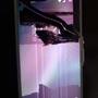 スマートフォンの画面割れ、自分で直せるかもしれません。【DIY】