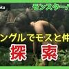 【モンハン実況#8】MHW出る前に無印やる【ジャングルでモスと仲良く探索】
