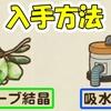 【牧場物語】 オリーブ結晶、吸水機の入手方法 【牧場物語 オリーブタウンと希望の大地】