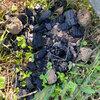 放置された炭の写真