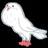 今年の鳩対策はアロマオイル