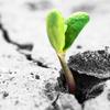 成長する必要はある!逃げ続けたって何一ついいことはない!