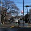 多摩湖自転車道~昭島温泉ライド