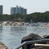アサリの中から蟹が・・・その結果、横浜の海の公園へ行くことに。