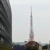 76%以上の人が「マグロは日本全国で人気がある」と勘違い