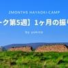 【早起きキャンプ】1ヶ月を振り返り(ワーク第5週)