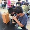5年生:理科 ヘチマの花粉を顕微鏡で見る