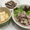 ゆで豚サラダ&イワシの生姜煮