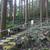 結構ハード(;´Д`)硫黄谷庭園を散策@鹿児島県霧島市牧園町