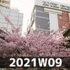 週報 2021W09