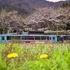 華やかなりし頃、樽見鉄道・1999年桜ダイヤ その2