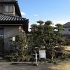 2020.12.19 ゆずり葉~千波湖