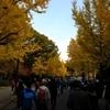 大阪マラソン:5年連続、仮装では3年連続の完走!