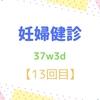 37w3d 妊婦健診【13回目】 看護学生とエコー