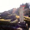 鳥獣を模した石庭と抜群の眺望! 正法寺