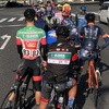 【ロードバイク】初めてのロードレース: ジャパンカップ2018 チャレンジレース