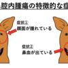 『犬の鼻腔内腫瘍』①鼻血・鼻水に注意!~概要・症状~