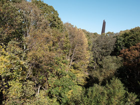 秋の野幌森林公園で写真撮影
